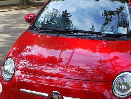 Fiat 2 crop