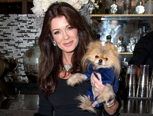 dish-041213-lisa-vanderpump-giggy